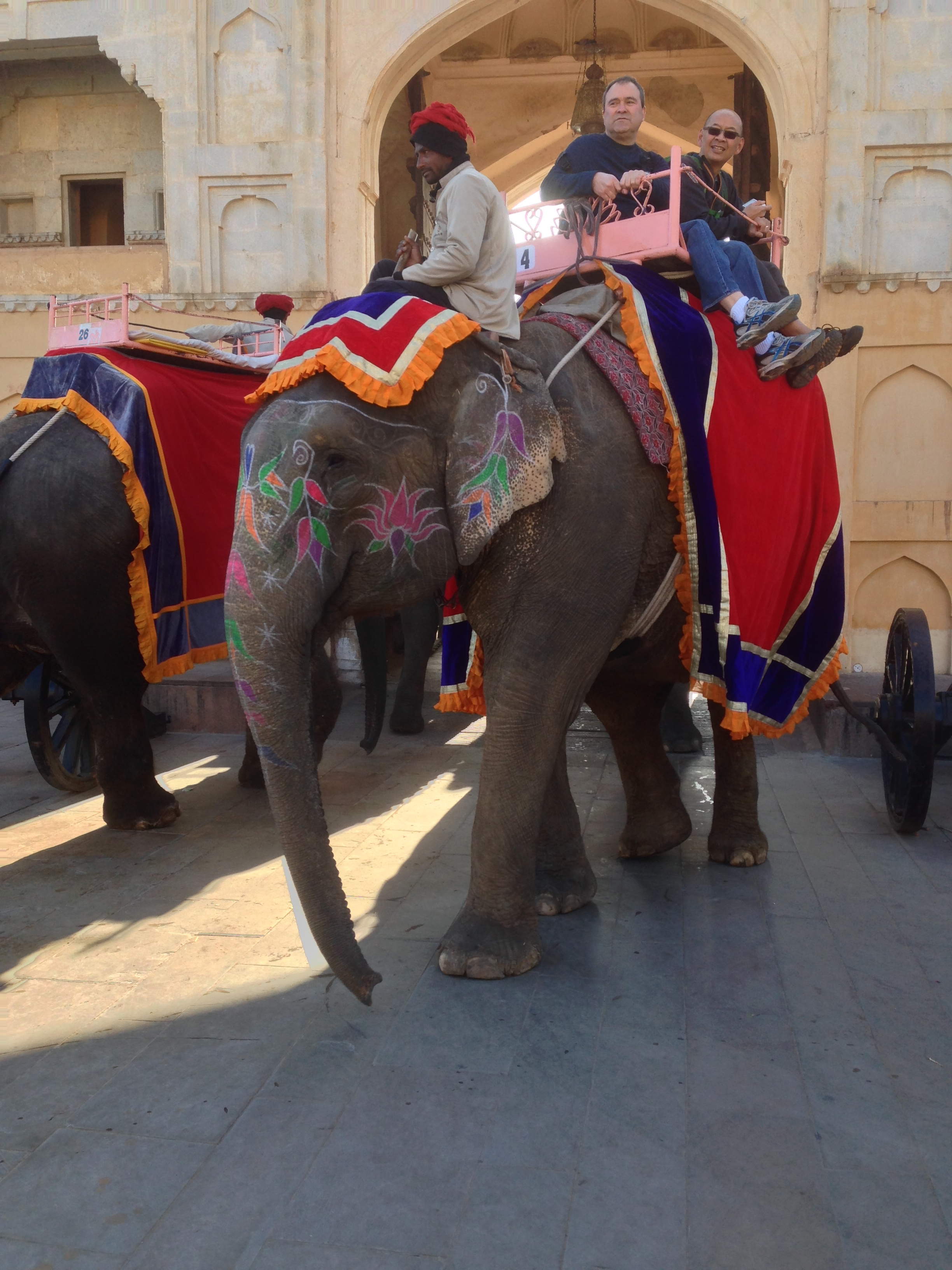 The elephants we saw--like Moti--at Amer Fort near Jaipur in Rajasthan.