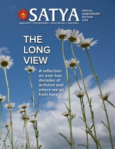 Satya The Long View
