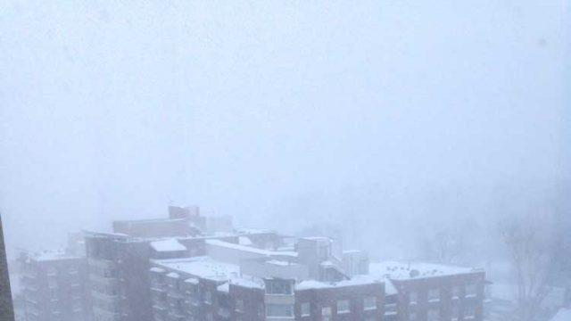 blizzard-Bethesda